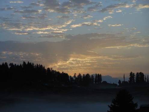 Dawn 01