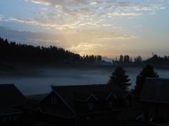 Dawn 02