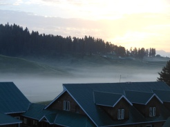 Fog in Valley 01